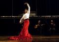 Festival de Flamenco de Toulouse 2015