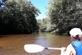 Balade en canoë le long de la Leyre