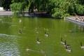 Le parc Bordelais (33)